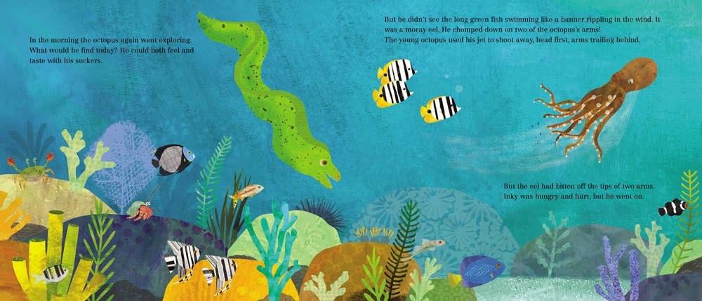Simon & Schuster/Paula Wiseman Books Inky's Amazing Escape