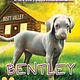 Scholastic Inc. Bentley (The Puppy Place #53)