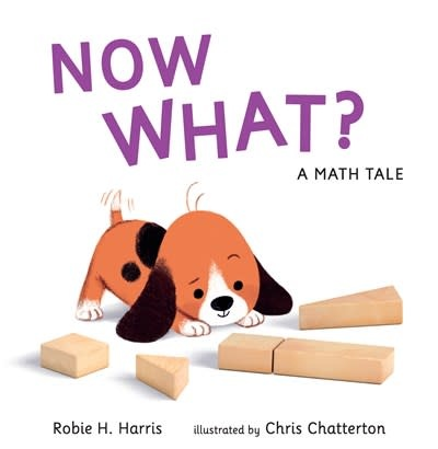 Candlewick Now What? A Math Tale