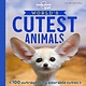 Lonely Planet Kids World's Cutest Animals