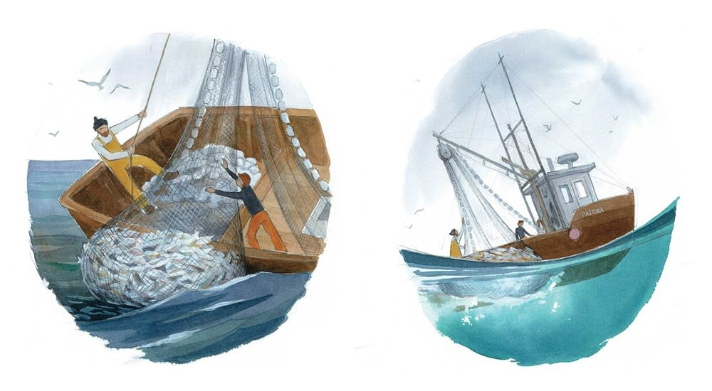 Simon & Schuster Books for Young Readers The Fisherman & the Whale