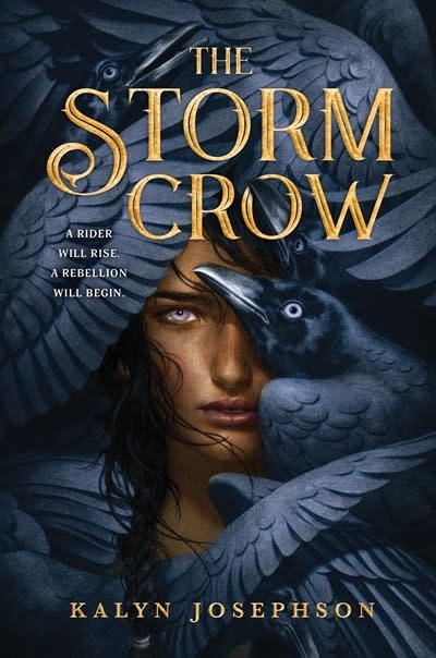 Sourcebooks Fire The Storm Crow