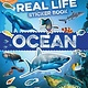 Silver Dolphin Books Discovery Real Life Sticker Book: Ocean