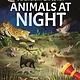 Arcturus Publishing Limited Flashlight Explorers: Animals at Night