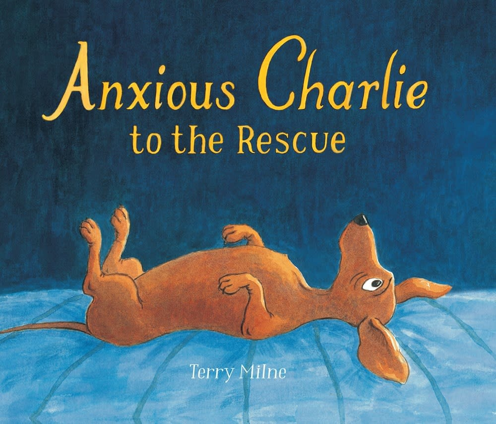 Candlewick Anxious Charlie to the Rescue