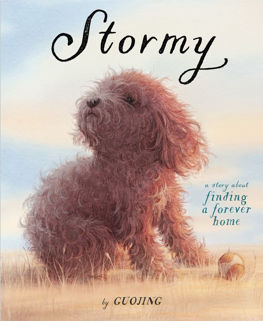 Schwartz & Wade Stormy: A Story About Finding a Forever Home