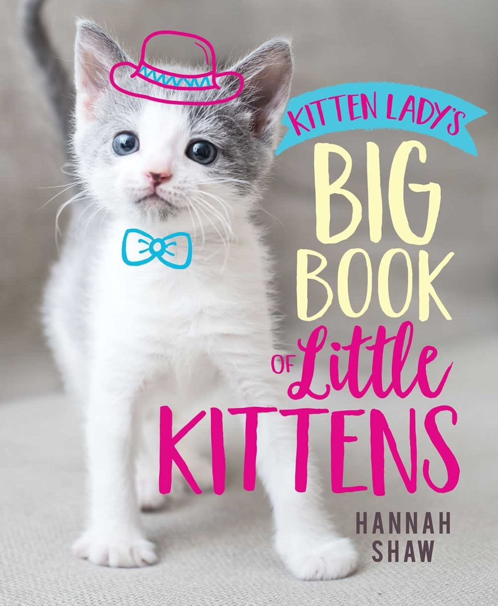 Aladdin Kitten Lady's Big Book of Little Kittens