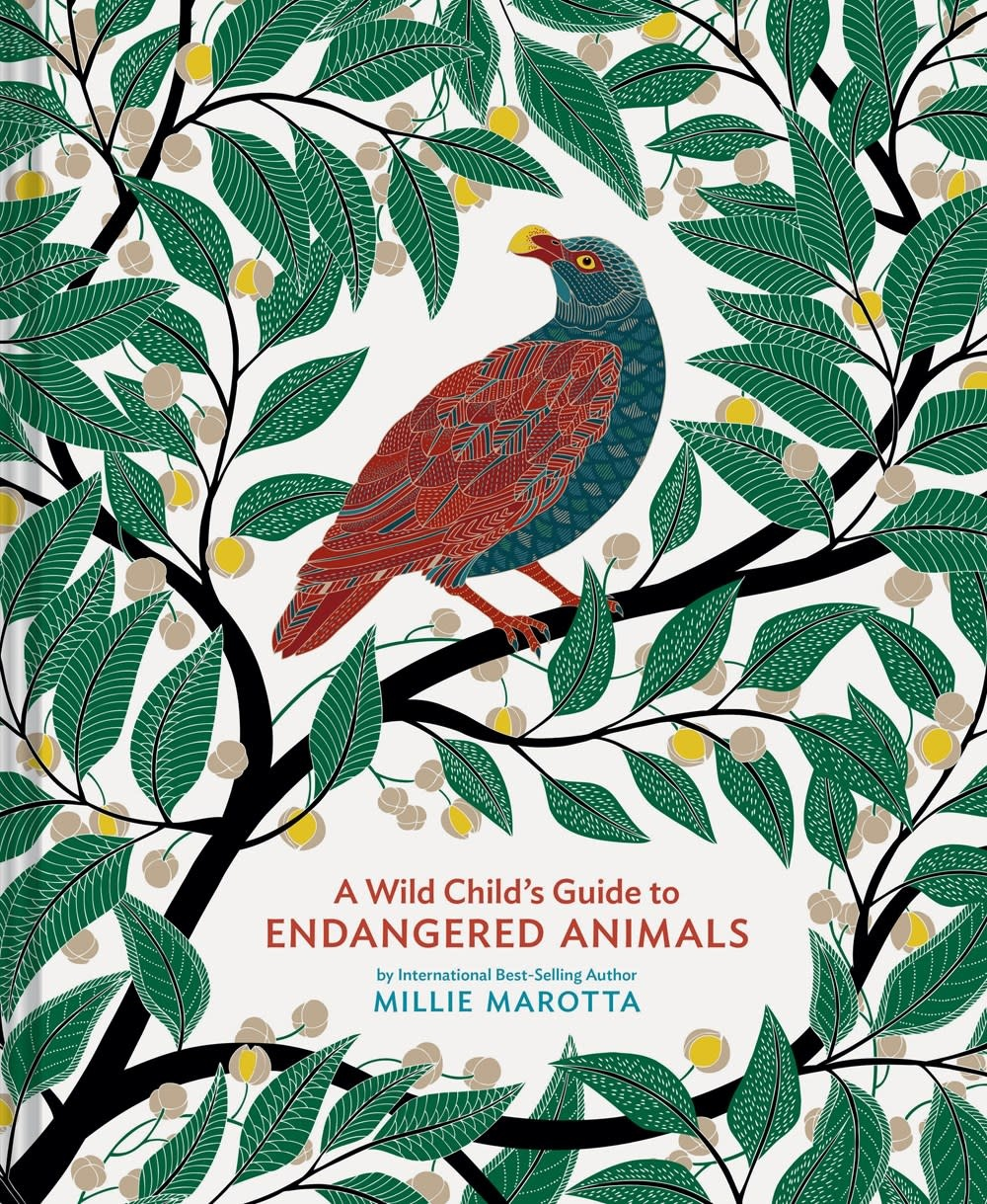 Chronicle Books A Wild Child's Guide to Endangered Animals
