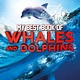 Kingfisher My Best Book of Whales and Dolphins