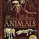 Silver Dolphin Books Bone Collection: Animals