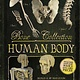 Silver Dolphin Books Bone Collection: Human Body