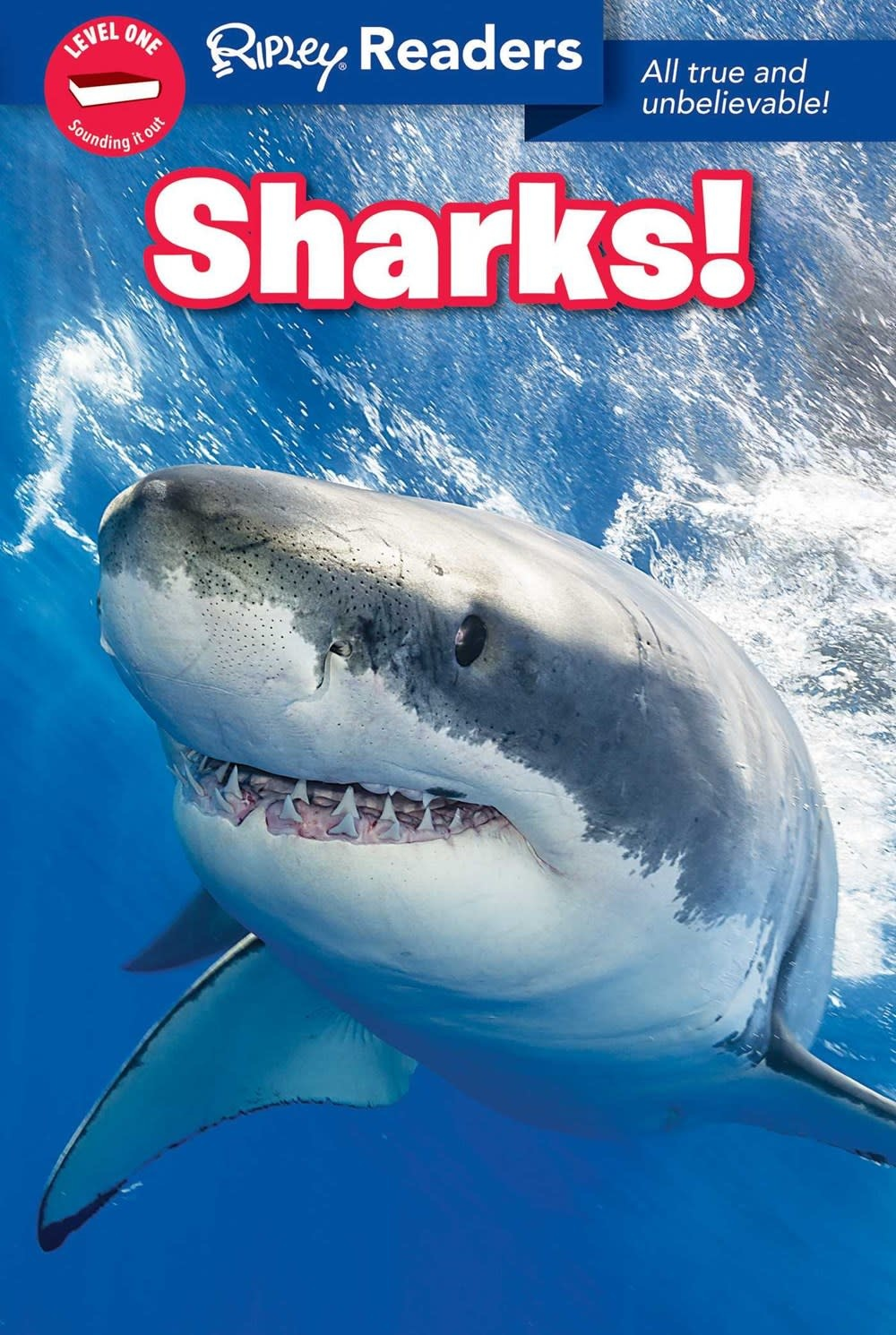 Ripley Publishing Sharks (Ripley Readers, Lvl 1)