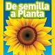 National Geographic Children's Books Sunflowers/De Semilla a Planta (Nat Geo Readers, Spanish, Lvl 1)