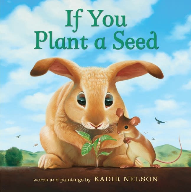 Balzer + Bray If You Plant a Seed (Board Book)