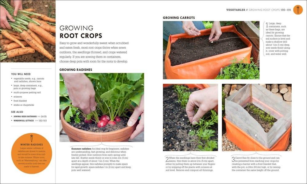 DK Beginner Gardening Step by Step