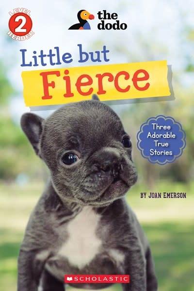 Scholastic Inc. Little But Fierce (The Dodo: Scholastic Reader, Level 2)