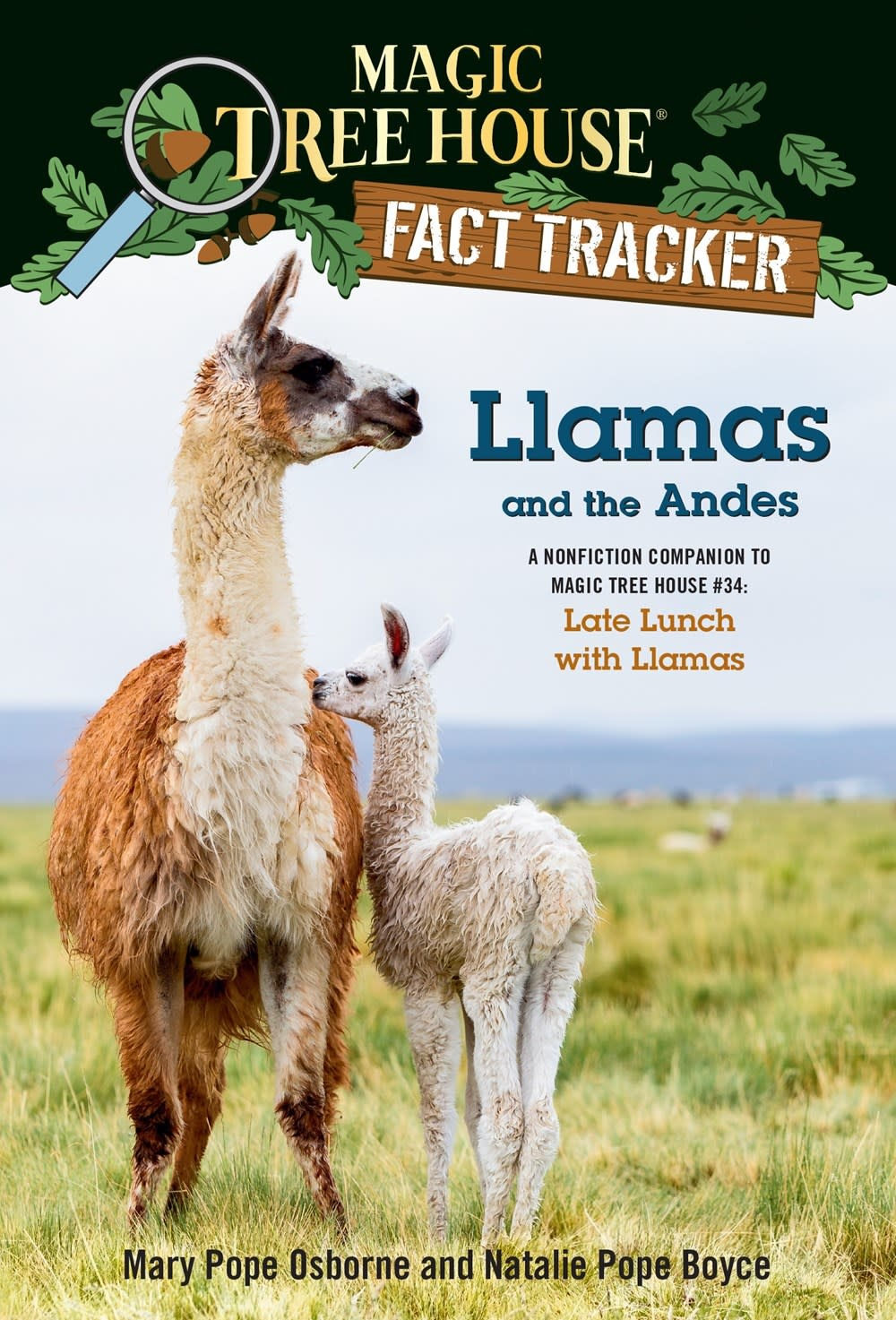 Random House Books for Young Readers Magic Tree House Fact Tracker: Llamas and the Andes