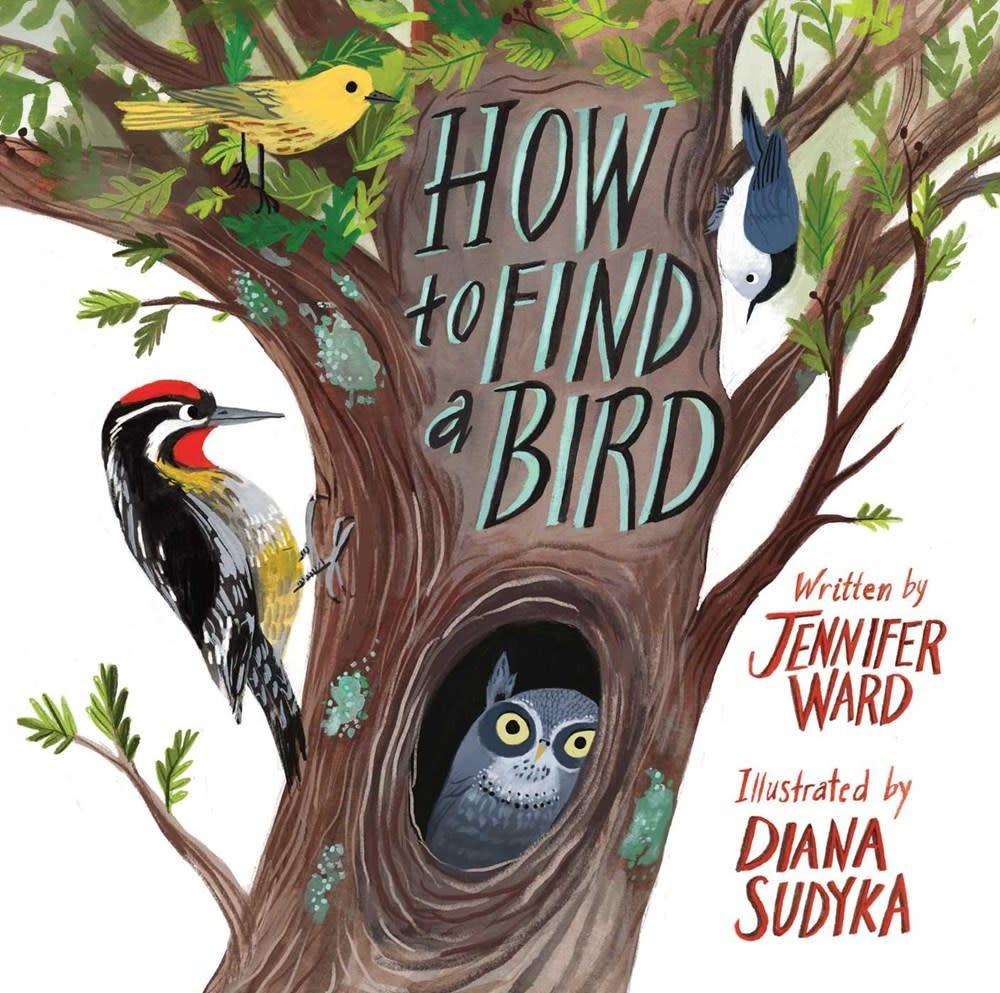 Beach Lane Books How to Find a Bird