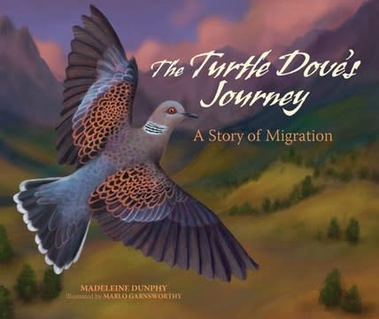 Web of Life Children's Books The Turtle Dove's Journey: A Story of Migration