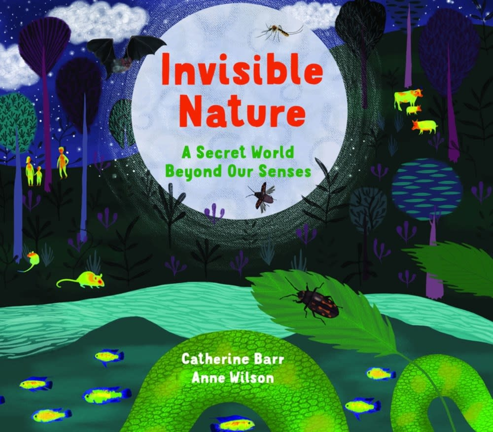 Otter-Barry Books Invisible Nature: A Secret World Beyond Our Senses