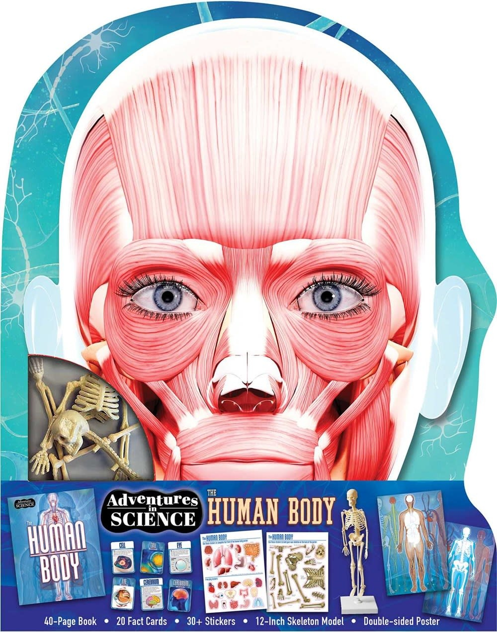 Silver Dolphin Books Adventures in Science: Human Body