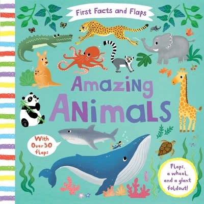 Silver Dolphin Books First Facts and Flaps: Amazing Animals