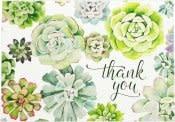 Succulent Garden Thank You Notes