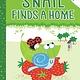 Aladdin Snail Finds a Home