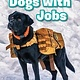 Ripley Publishing Ripley Readers LEVEL3 Dogs With Jobs