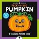 Priddy Books Changing Picture Book: Peek a Boo Pumpkin, A