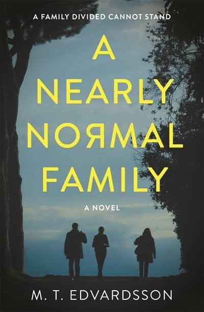 Celadon Books A Nearly Normal Family: A novel