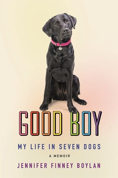 Celadon Books Good Boy