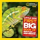 National Geographic Children's Books Little Kids First Big Book of Reptiles and Amphibians