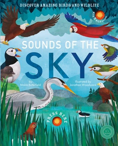 360 Degrees Sounds of the Sky