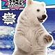Simon Spotlight Polar Bear Fur Isn't White!