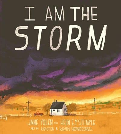 Rise x Penguin Workshop I Am the Storm