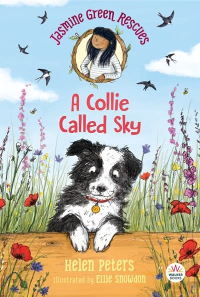 Walker Books US Jasmine Green Rescues: A Collie Called Sky