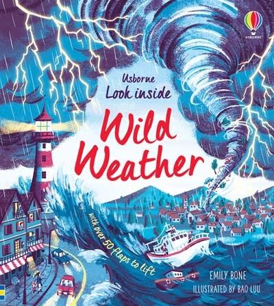 Usborne Look Inside Wild Weather IR