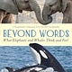 Square Fish Beyond Words: What Elephants and Whales Think and Feel (A Young Reader's Adaptation)