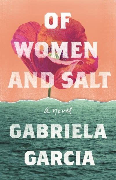 Flatiron Books Of Women and Salt: A novel
