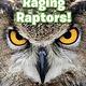 Ripley Publishing Ripley Readers LEVEL2 Raging Raptors!