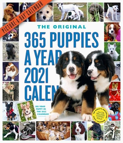 Workman Publishing Company 365 Puppies-A-Year Picture-A-Day Wall Calendar 2021