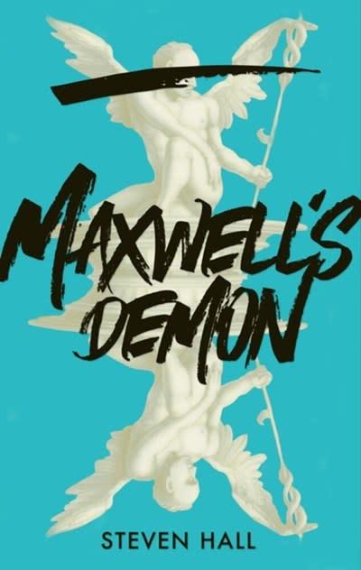 Grove Press Maxwell's Demon: A novel