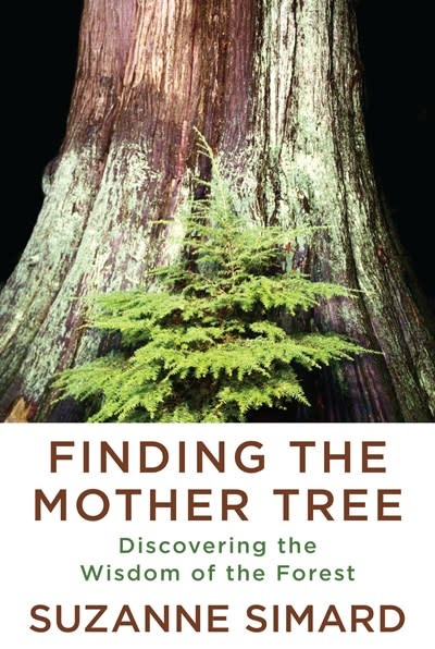 Knopf Finding the Mother Tree