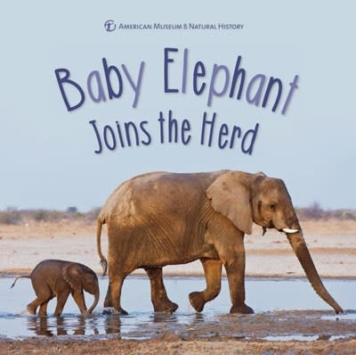 Sterling Children's Books Baby Elephant Joins the Herd