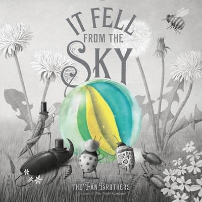 Simon & Schuster Books for Young Readers It Fell from the Sky