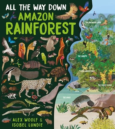 Book House All the Way Down: Amazon Rainforest