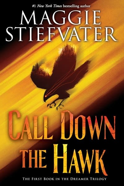 Scholastic Inc. Call Down the Hawk (The Dreamer Trilogy, Book 1)