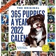 Workman Publishing Company 365 Puppies-A-Year Picture-A-Day Wall Calendar 2022