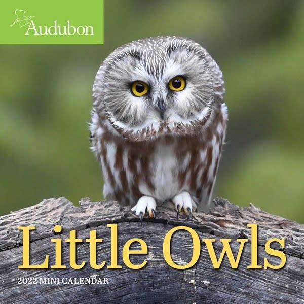Workman Publishing Company Audubon Little Owls Mini Wall Calendar 2022